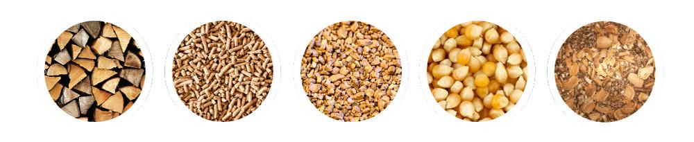 biomasse-quali